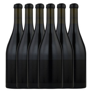 Standish Wine Co Shubert Theorem Shiraz Duo 6 pack